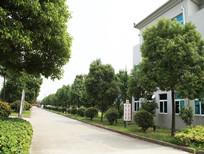 天晟药业厂区(二)